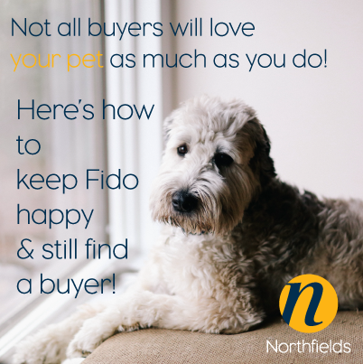 How-to-sell-your-property-when-you-have-pets
