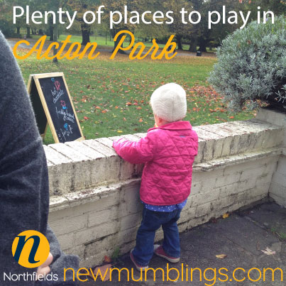 Places-to-play-in-Acton-Park
